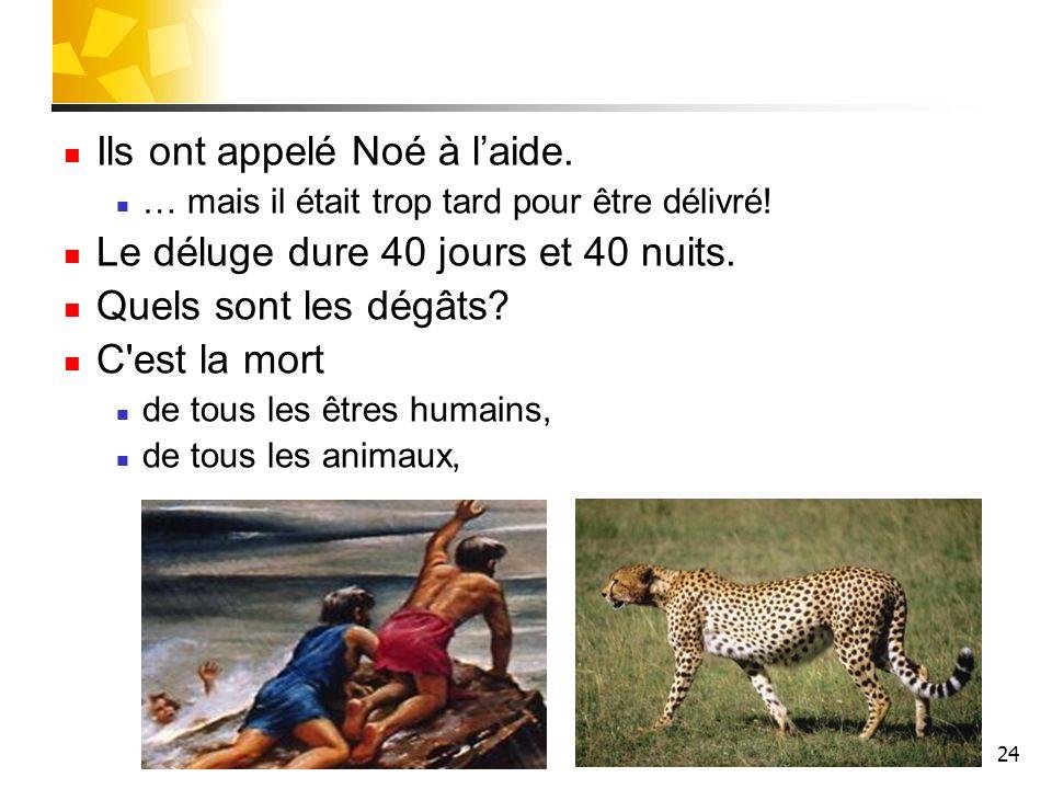 Ils ont appelé Noé à l'aide. Le déluge dure 40 jours et 40 nuits.