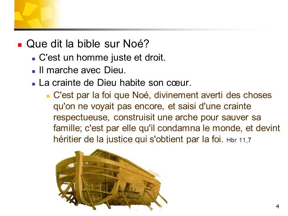 Que dit la bible sur Noé C est un homme juste et droit.