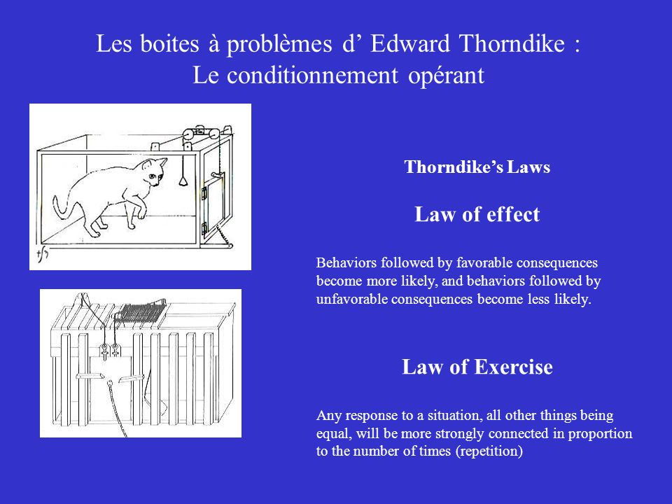 Les boites à problèmes d' Edward Thorndike : Le conditionnement opérant