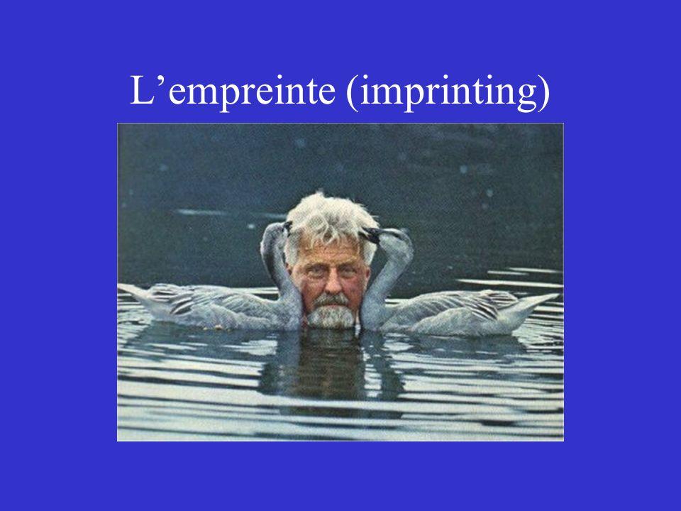 L'empreinte (imprinting)