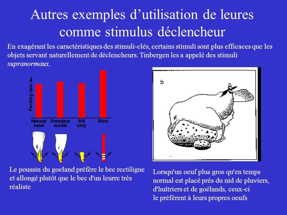 Autres exemples d'utilisation de leures comme stimulus déclencheur