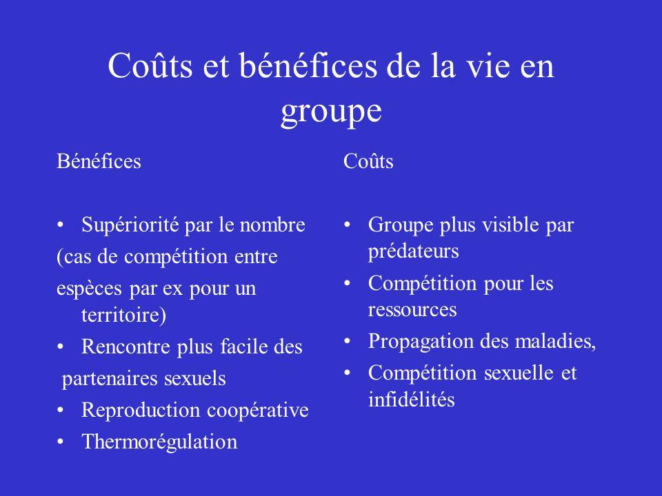 Coûts et bénéfices de la vie en groupe