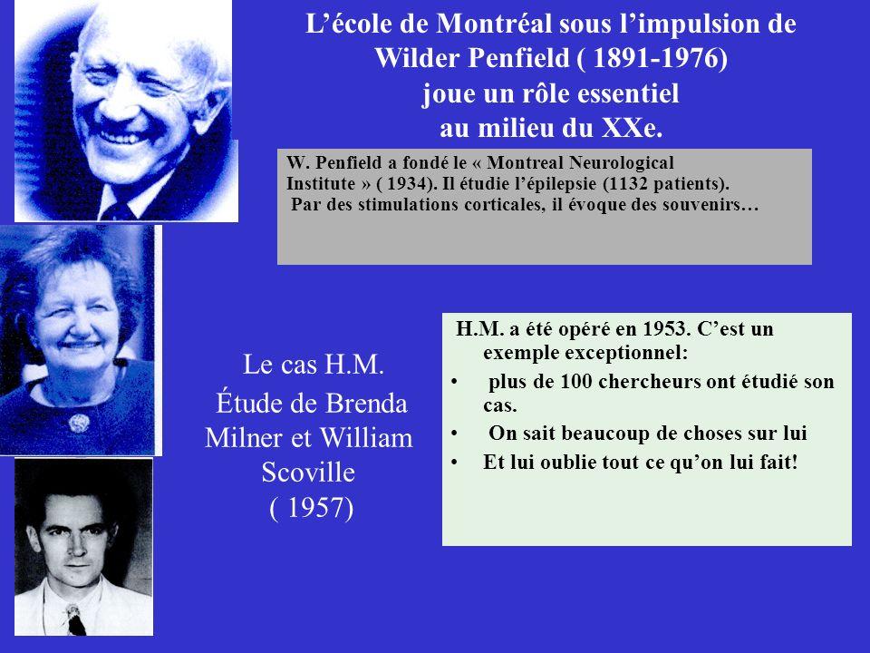 Le cas H.M. Étude de Brenda Milner et William Scoville ( 1957)