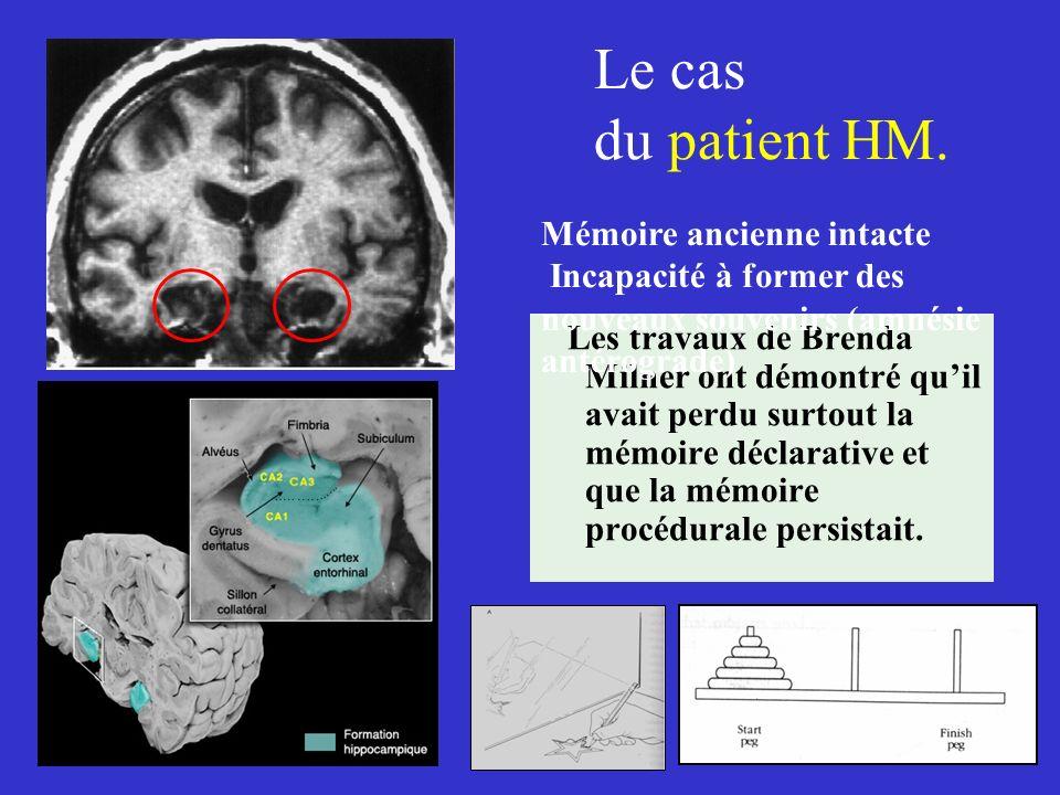 Le cas du patient HM. Mémoire ancienne intacte