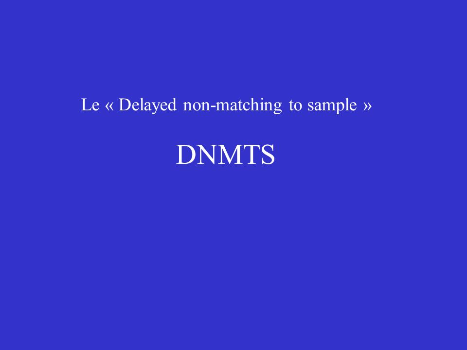 Le « Delayed non-matching to sample »