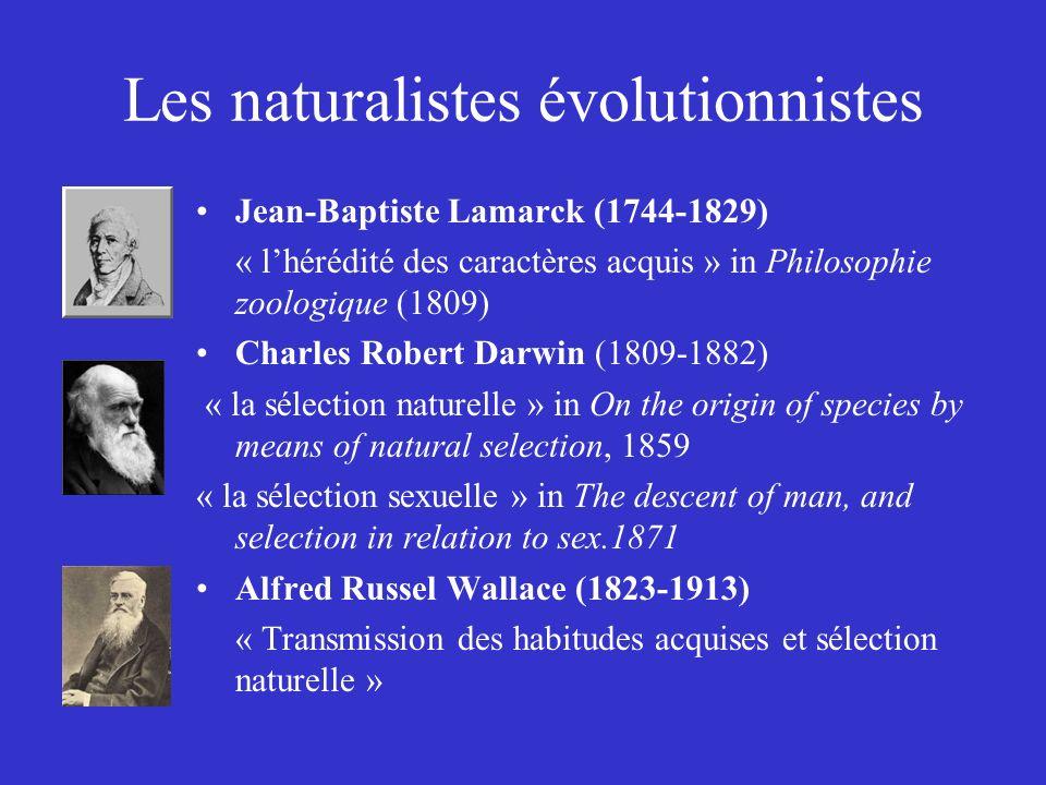 Les naturalistes évolutionnistes