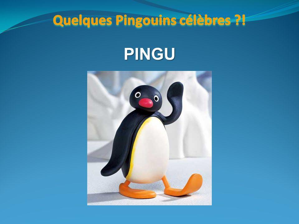 Quelques Pingouins célèbres !