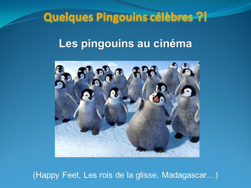 Quelques Pingouins célèbres ! Les pingouins au cinéma