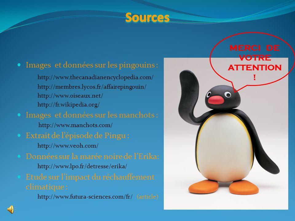 Sources MERCI DE VOTRE Images et données sur les pingouins :