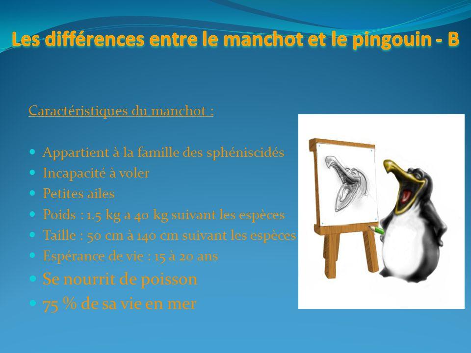 Le pingouin est il vraiment celui que l on croit ppt t l charger - Difference entre sisal et jonc de mer ...