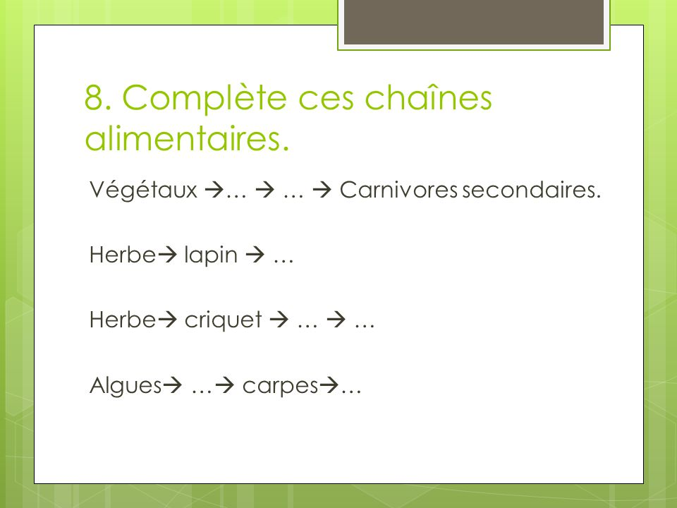 8. Complète ces chaînes alimentaires.