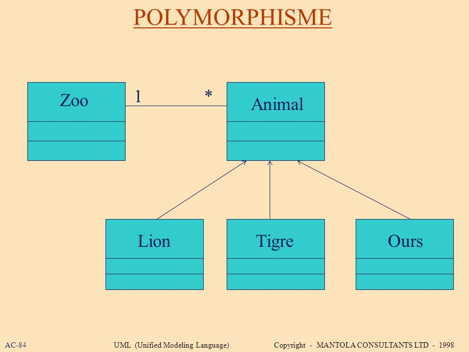 POLYMORPHISME 1 * Zoo Animal Lion Tigre Ours AC-84