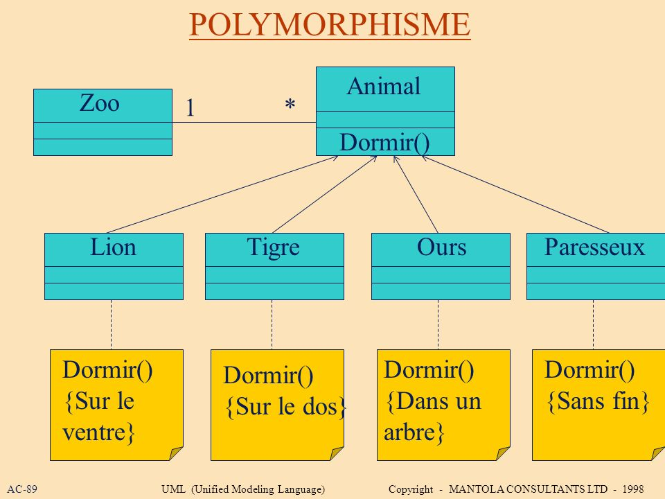 POLYMORPHISME Animal Zoo 1 * Dormir() Lion Tigre Ours Paresseux