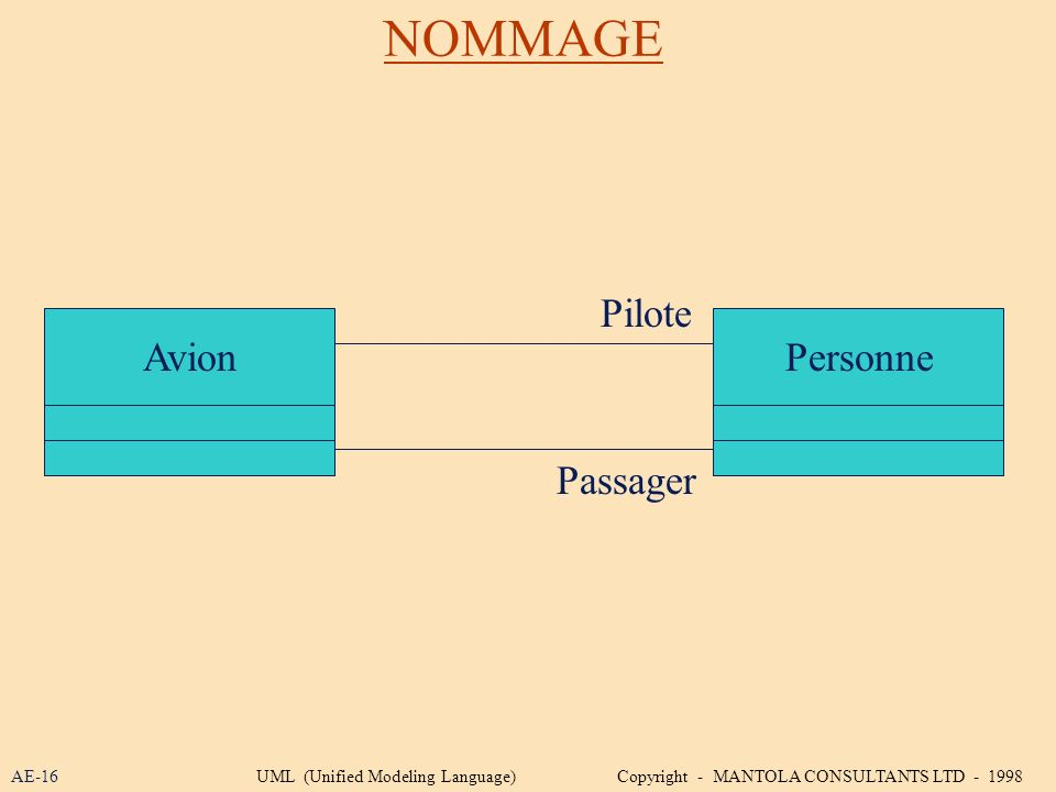 NOMMAGE Pilote Avion Personne Passager AE-16