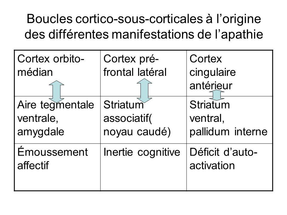 Boucles cortico-sous-corticales à l'origine des différentes manifestations de l'apathie
