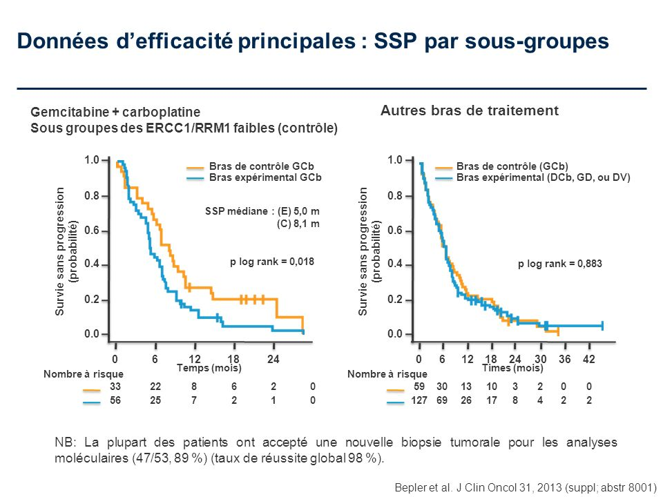 Données d'efficacité principales : SSP par sous-groupes