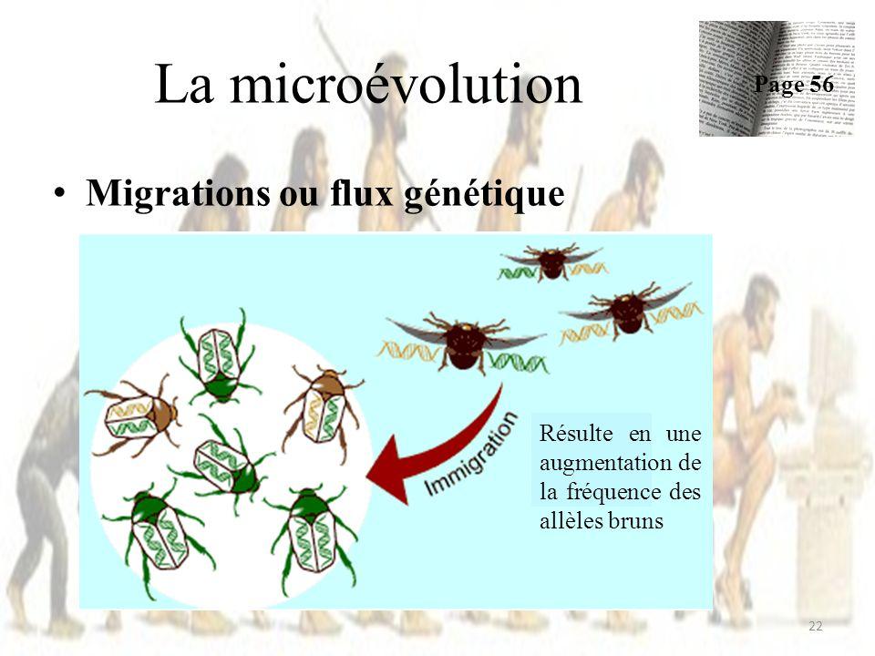 La microévolution Migrations ou flux génétique Page 56