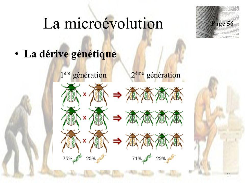 La microévolution La dérive génétique 1ère génération 2ème génération