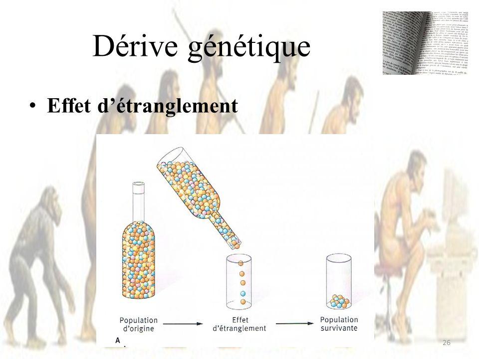 Dérive génétique Effet d'étranglement