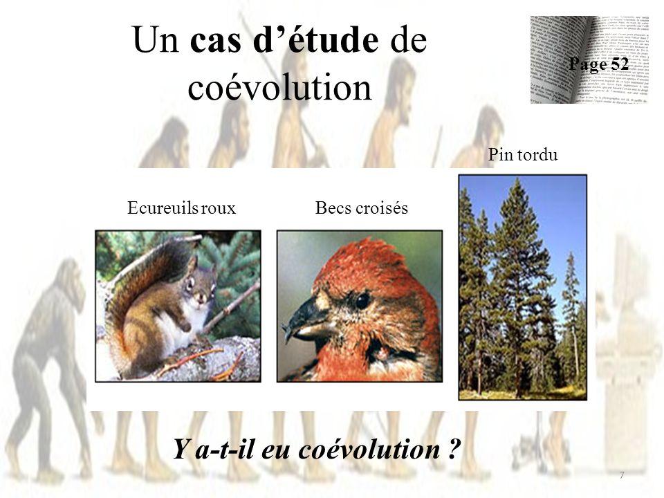 Un cas d'étude de coévolution