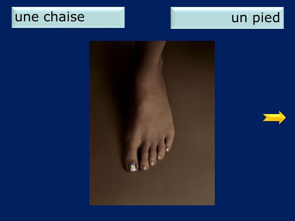 une chaise un pied 2