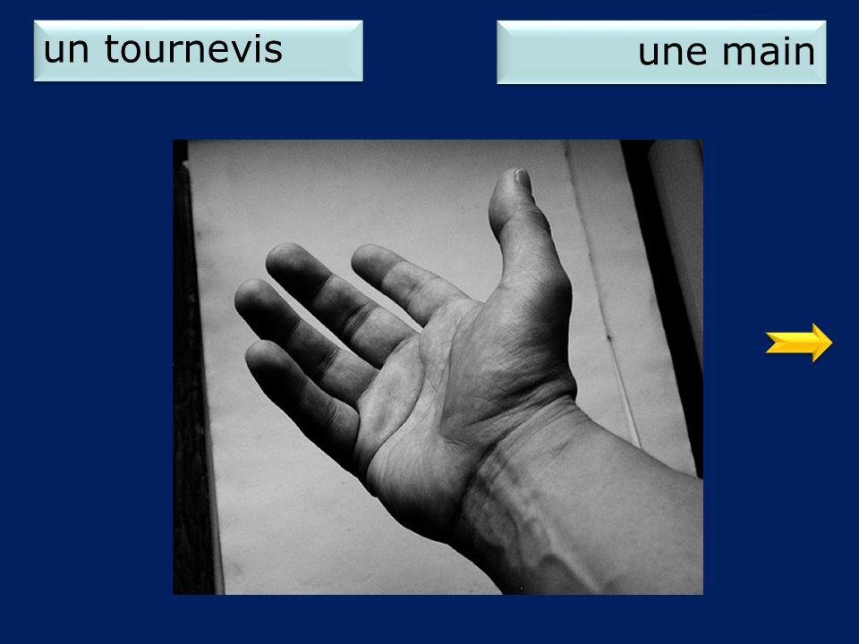 un tournevis une main 2