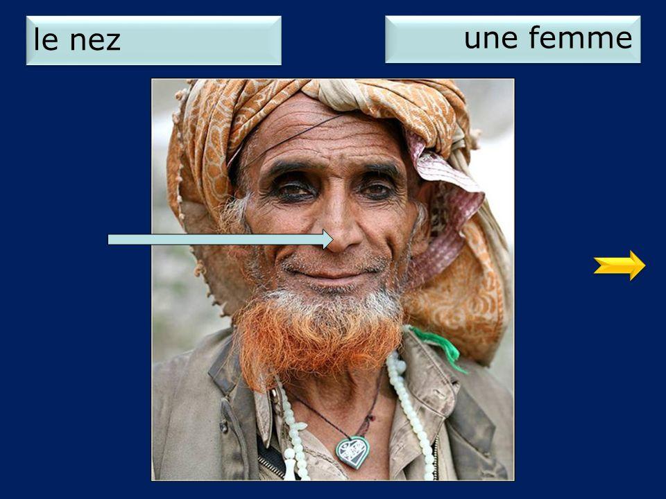 le nez une femme 1
