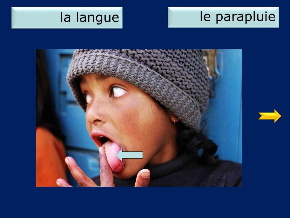 la langue le parapluie 1