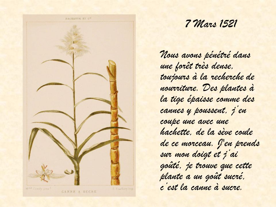 7 Mars 1521