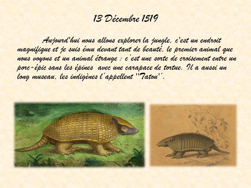 13 Décembre 1519