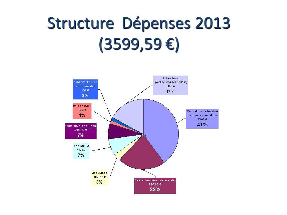 Structure Dépenses 2013 (3599,59 €)