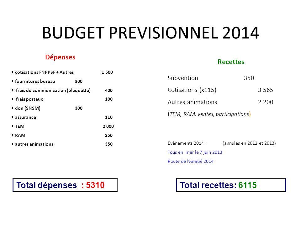 BUDGET PREVISIONNEL 2014 Total dépenses : 5310 Total recettes: 6115