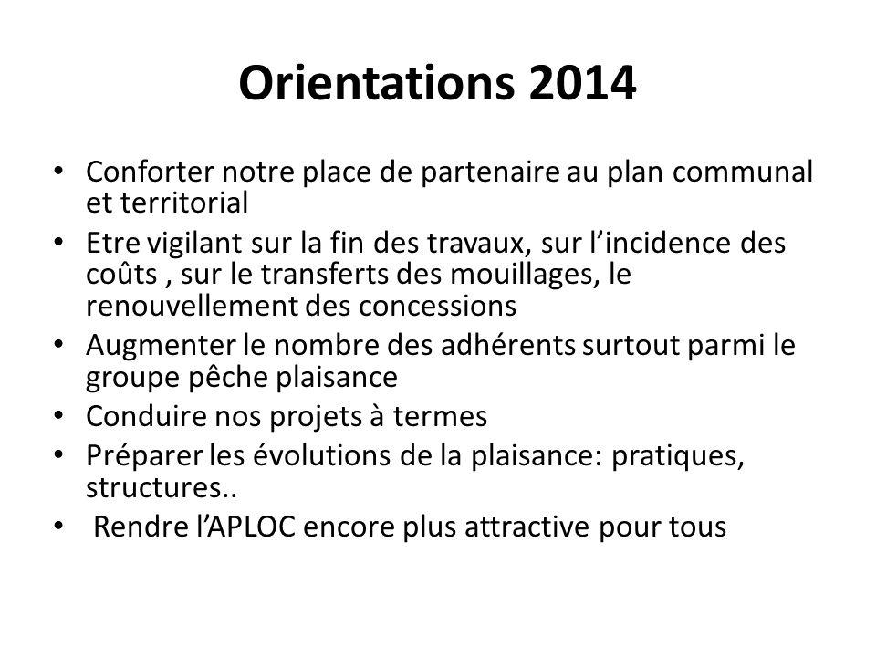 Orientations 2014 Conforter notre place de partenaire au plan communal et territorial.