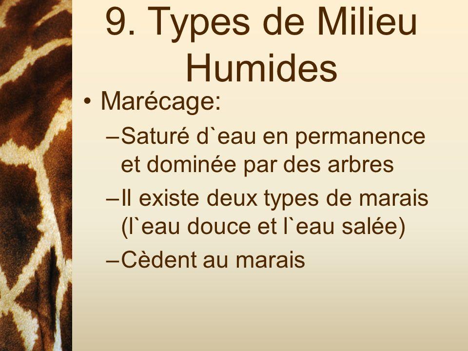 9. Types de Milieu Humides