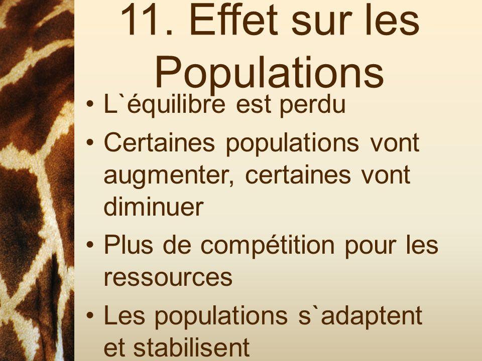 11. Effet sur les Populations