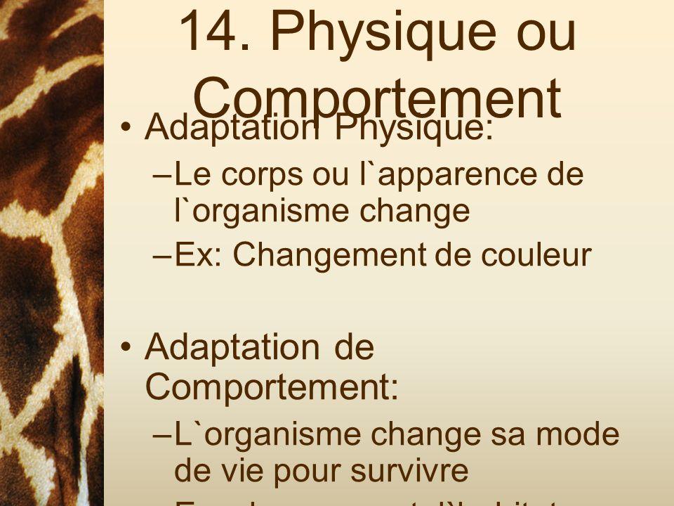 14. Physique ou Comportement