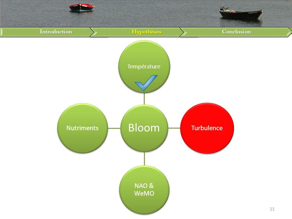 Température Introduction Hypothèses Conclusion Bloom Turbulence