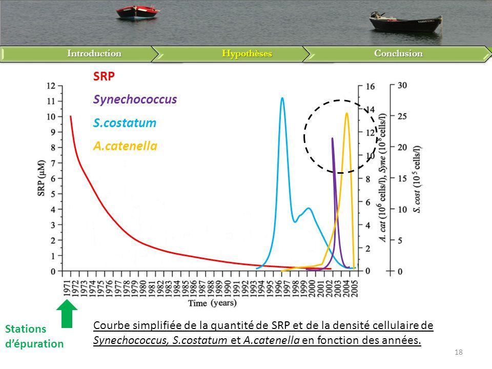 SRP Synechococcus S.costatum A.catenella