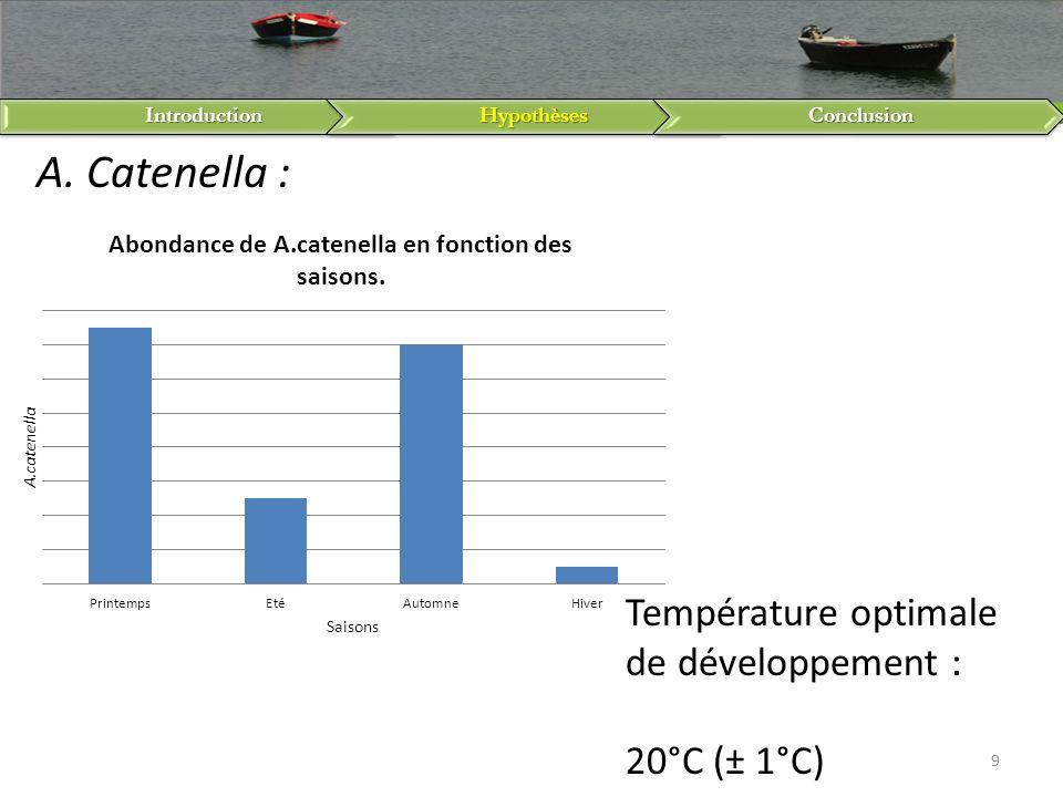 A. Catenella : Température optimale de développement : 20°C (± 1°C)