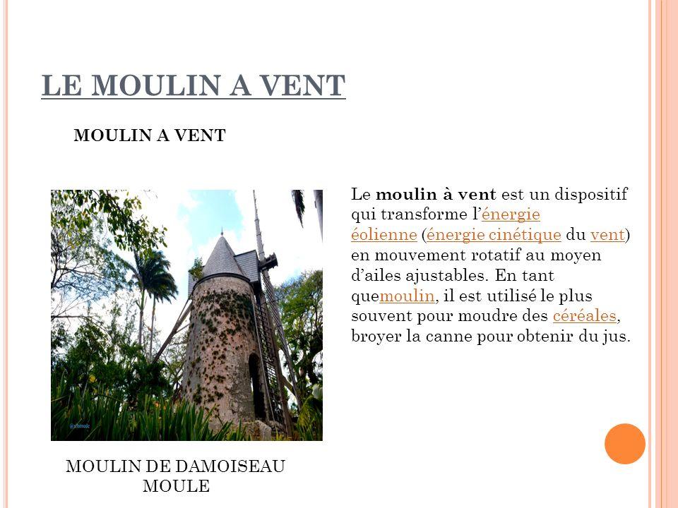 MOULIN DE DAMOISEAU MOULE