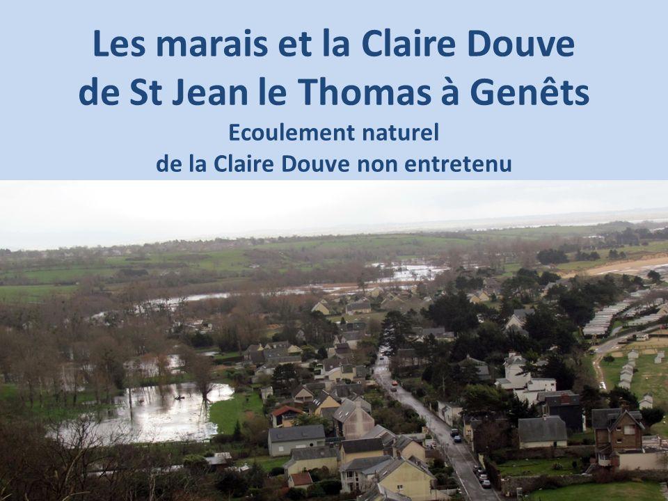 Les marais et la Claire Douve de St Jean le Thomas à Genêts Ecoulement naturel de la Claire Douve non entretenu