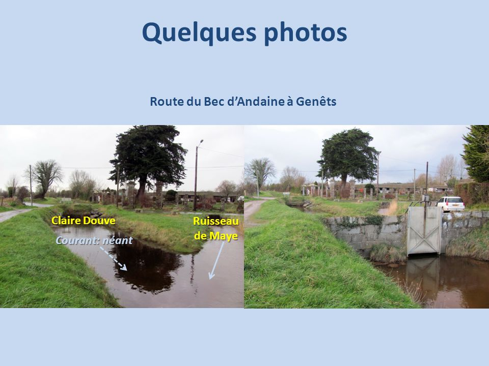 Quelques photos Route du Bec d'Andaine à Genêts Claire Douve Ruisseau