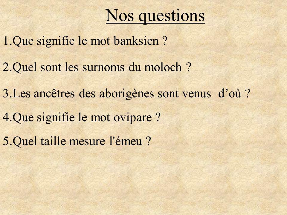 Nos questions 1.Que signifie le mot banksien