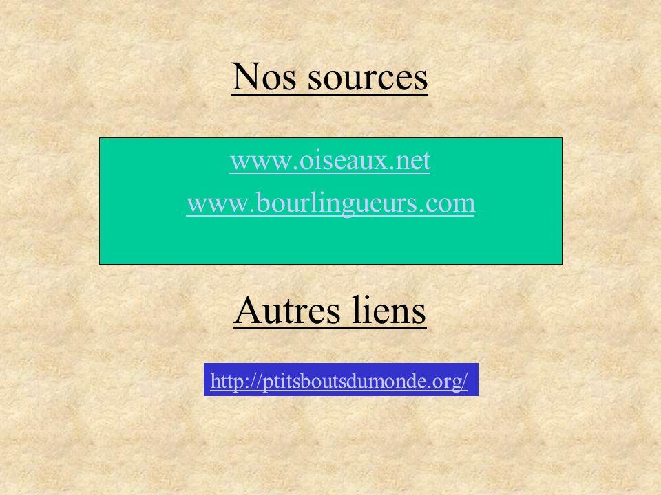 www.oiseaux.net www.bourlingueurs.com