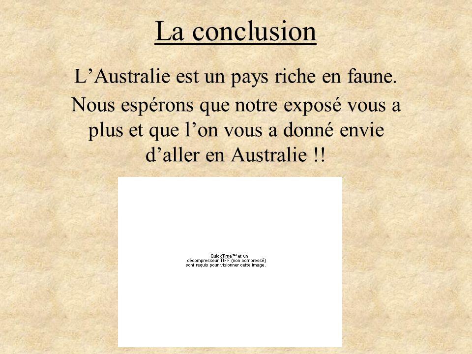 L'Australie est un pays riche en faune.