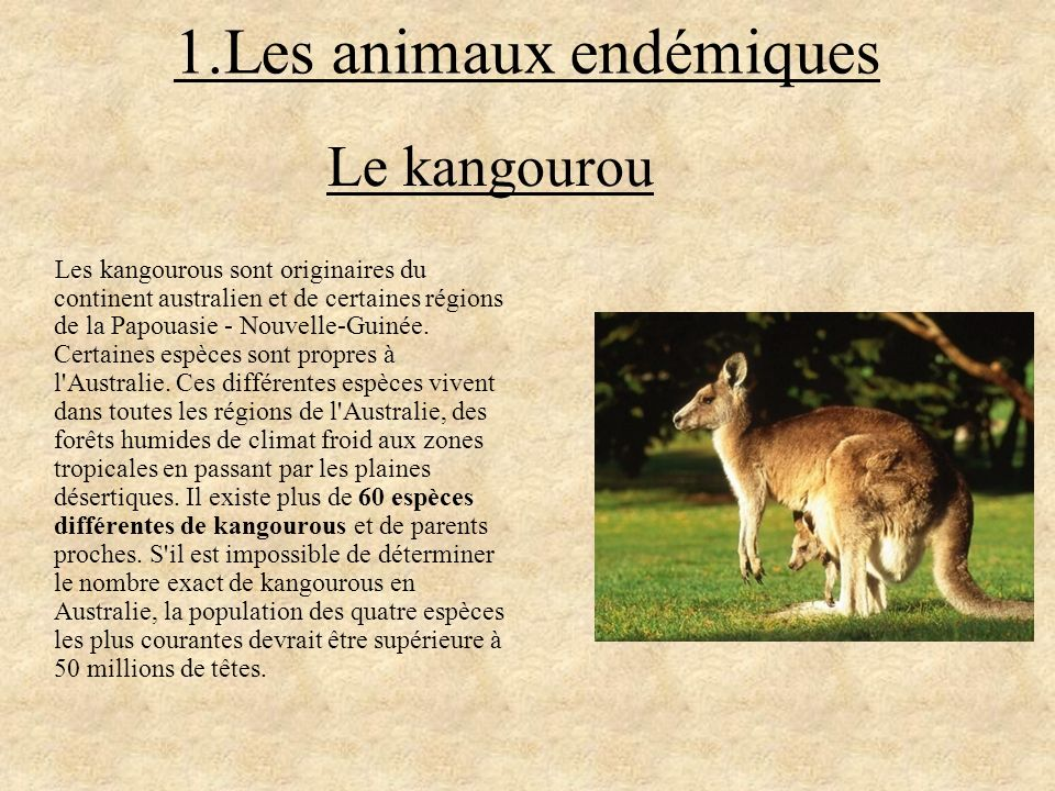 1.Les animaux endémiques