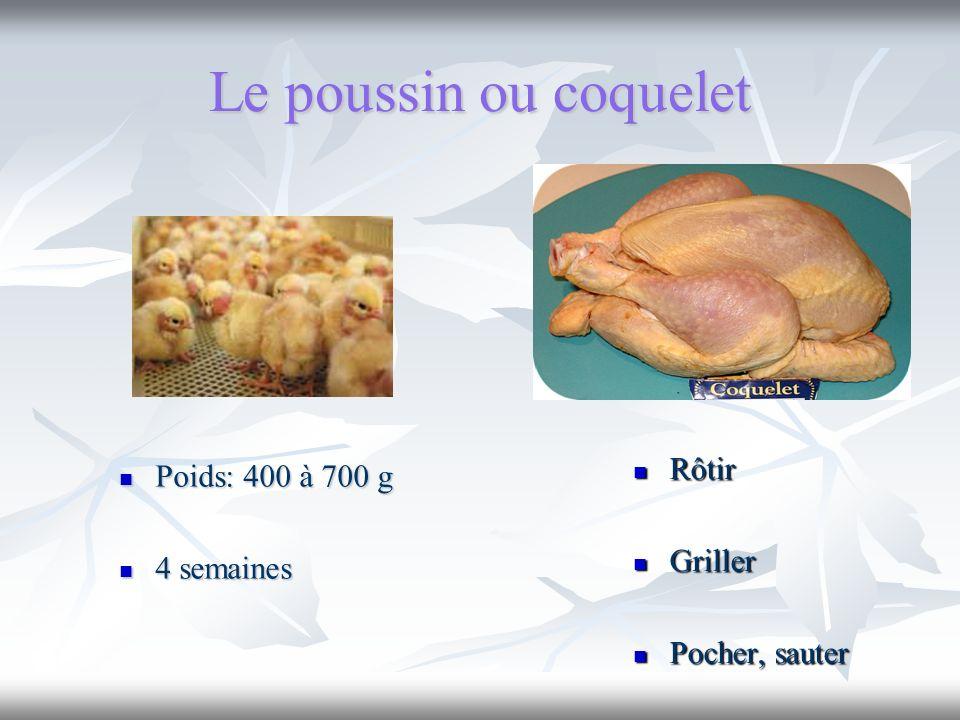 Le poussin ou coquelet Rôtir Poids: 400 à 700 g Griller 4 semaines