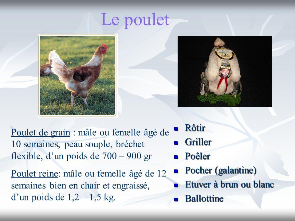 Le poulet Rôtir. Griller. Poêler. Pocher (galantine) Etuver à brun ou blanc. Ballottine.