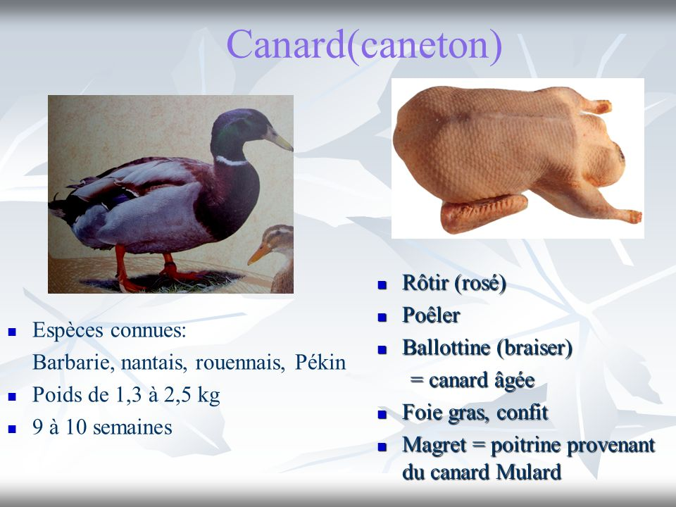 Canard(caneton) Rôtir (rosé) Poêler Ballottine (braiser)