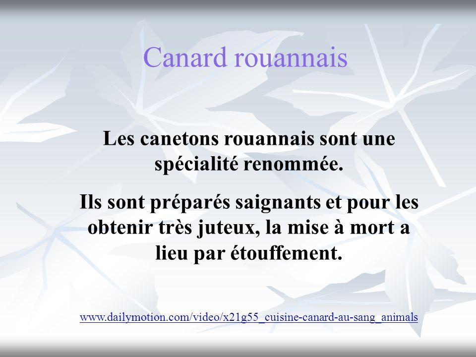 Les canetons rouannais sont une spécialité renommée.